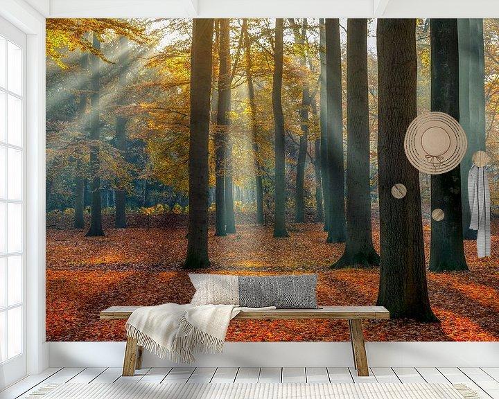 Sfeerimpressie behang: Zonnestralen in het beukenbos in de herfst, Utrechtse Heuvelrug, Nederland van Sjaak den Breeje Landschapsfotografie