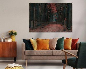 Bos oranjewoud van Claudia De Vries