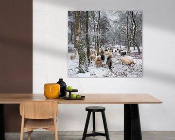 Schafherde im verschneiten Wald von anton havelaar