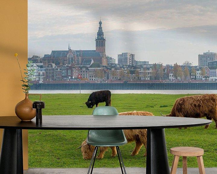 Sfeerimpressie behang: Grazende Schotse Hooglanders met Nijmegen en Stevenskerk op achtergrond van Maerten Prins