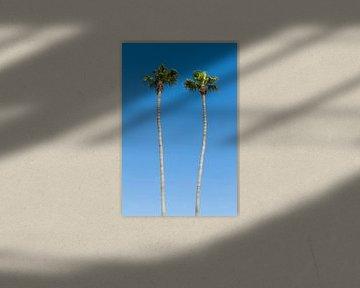 Sommeridylle mit Palmen von Melanie Viola