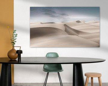 2233  Desert
