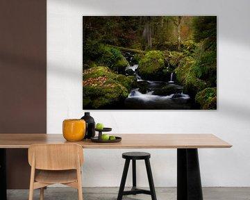 Prachtige watervalletjes in de Ravennaschlucht in het Zwarte woud, Duitsland van Jos Pannekoek