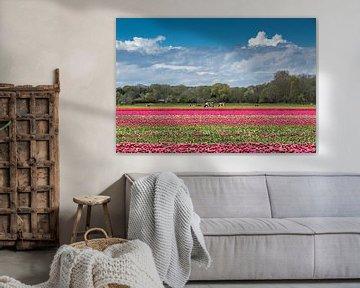 Landwirtschaft in den Niederlanden von Peter Leenen