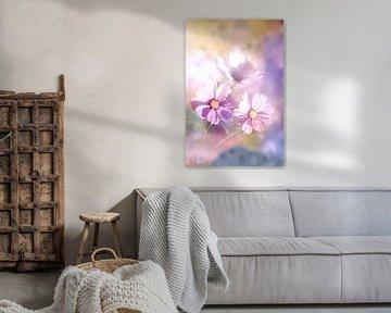 Drei Blüten des Sommers von Tanja Riedel