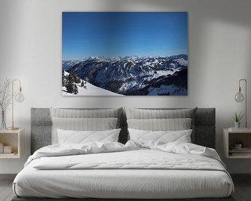 Winterse bergen