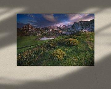 Asturias Lago de la Ercina van Jean Claude Castor