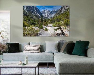 Point de vue de Kings Canyon sur Peter Leenen