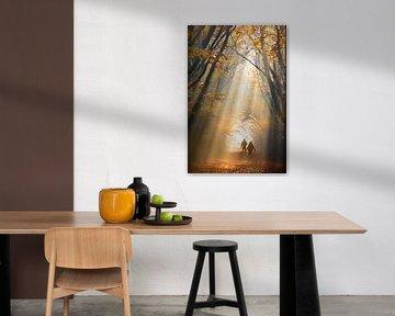 Nebliger Herbsttag von Niels  de Vries