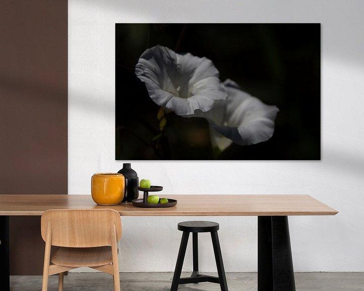 Sfeerimpressie: Romantische witte bloemen geïsoleerd tegen donkere achtergrond van Photo Henk van Dijk