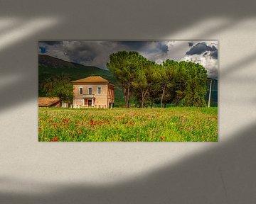 Ferme en Italie avec coquelicots à fleurs I sur Teun Ruijters