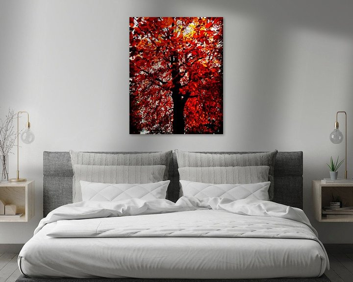 Sfeerimpressie: Vlammenboom van mimulux patricia no