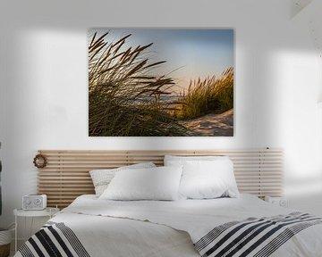 Marram Gras von Peter Leenen