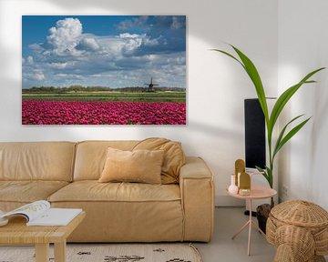 Schöne niederländische Landschaft von Peter Leenen