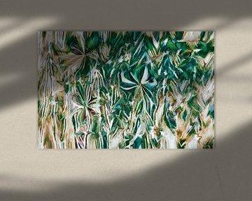 Rochid van GOOR abstracten