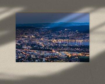 Uitzicht van Uetliberg naar Zürich en 's nachts het meer van Zürich. van Werner Dieterich