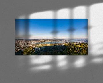 Blick vom Uetliberg auf Zürich und den Zürichsee von Werner Dieterich