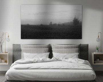 Polderlandschap in zwart-wit van Gerard de Zwaan