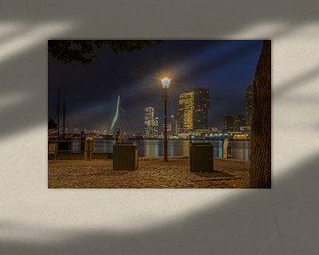 Een lichtje in het donker. Rotterdam in de avond van Harmen Goedhart