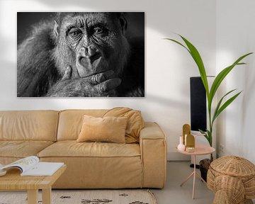 Gorilla close-up portret in zwart/wit van Sjoerd van der Wal