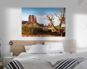 Lente in Monument Valley van Peter Leenen