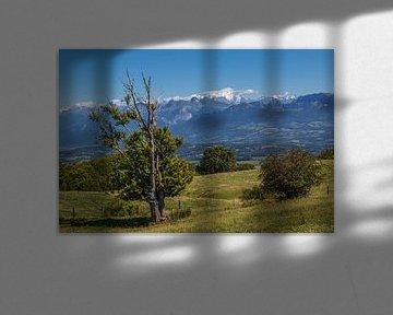 Mont Blanc kijkt uit over de Haute-Savoie, Frankrijk van Peter Leenen