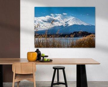 Der Fuji im Winter von Peter Leenen