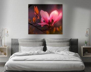 Branche avec fleur de magnolia sur Max Steinwald