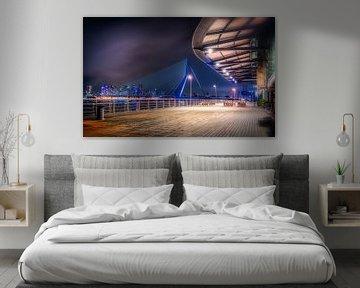 Erasmusbrug (De Zwaan) - Rotterdam van Mart Houtman