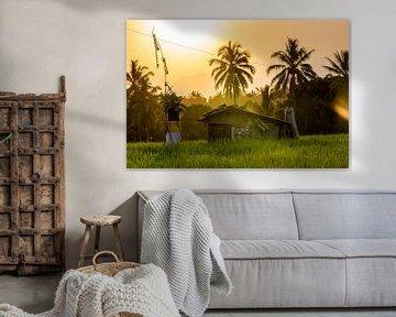 Uitzicht op een hut in de rijstvelden van Ubud in Indonesie van Michiel Ton