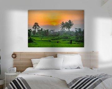 Uitzicht over de rijstvelden van Ubud op Bali Indonesie van Michiel Ton
