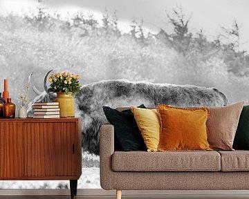 Schotse Hooglander in de vrieskou op Texel. van Justin Sinner Pictures ( Fotograaf op Texel)