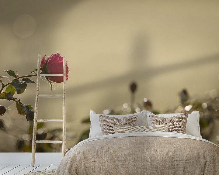 Sfeerimpressie behang: De geur van rozen in december van Hetwie van der Putten