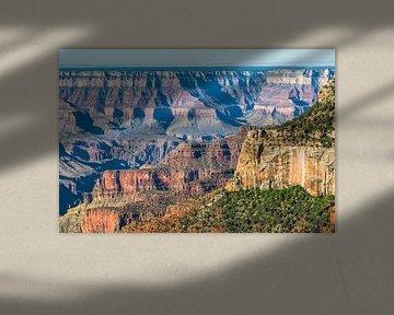 Grand Canyon North Rim van Peter Leenen