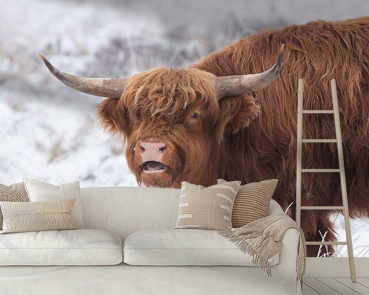 Sfeerimpressie behang: Schotse Hooglander van Rob Christiaans