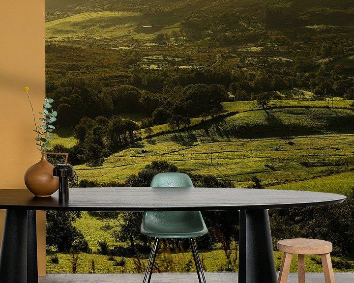 Sfeerimpressie behang: Ierland - Kerry - 50 tinten groen van Meleah Fotografie