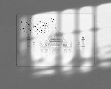 Taj Mahal von Thomas Herzog