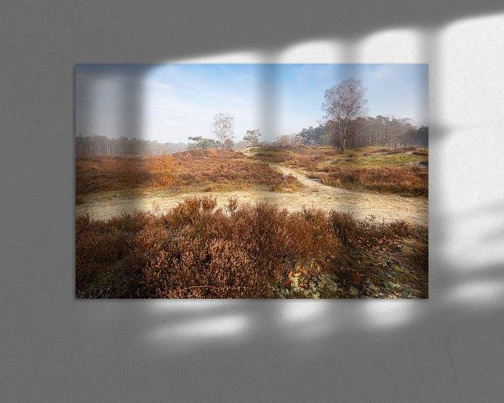 Sfeerimpressie: Zoomland, Bergen op Zoom van Teuni's Dreams of Reality