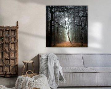 Overstekende boom in het Sterrenbos van Willem Jongkind