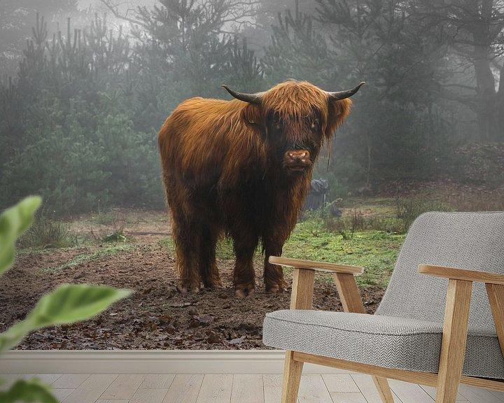 Sfeerimpressie behang: Mooie Schotse Hooglander rund in de mist van Patrick Verhoef