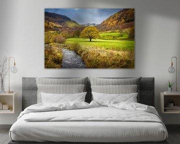 Herfst in het Lake district, Groot Brittannië van Rietje Bulthuis
