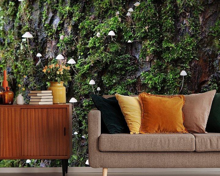 Sfeerimpressie behang: Kleine paddestoelen op boomstam van Johan Zwarthoed