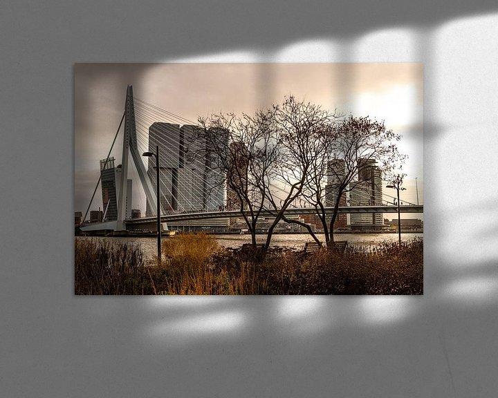 Sfeerimpressie: Rotterdam, zicht op de Erasmusbrug vanaf de Boompjeskade van Ingrid Aanen