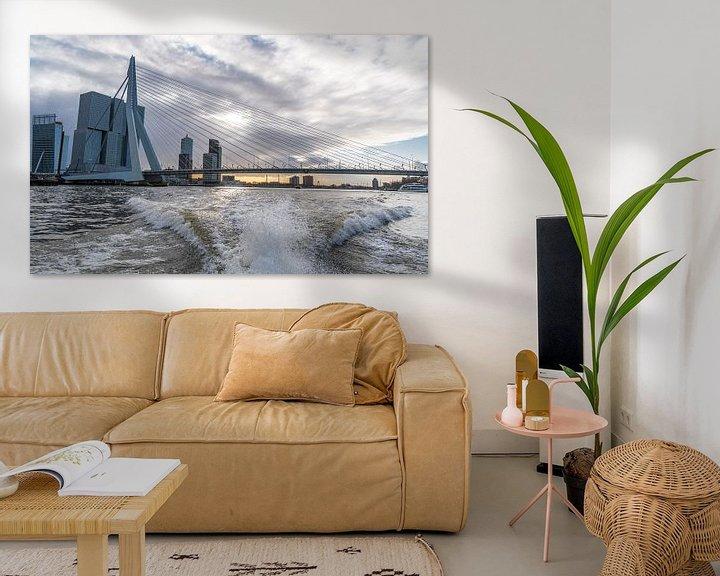 Sfeerimpressie: Rotterdam, Erasmusbrug vanaf de watertaxi van Ingrid Aanen