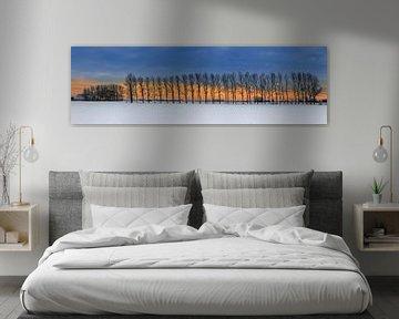 Winter panorama in Groningen, Nederland van Henk Meijer Photography