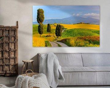 Agriturismo Podere Terrapille. Toscane, Italië van Henk Meijer Photography
