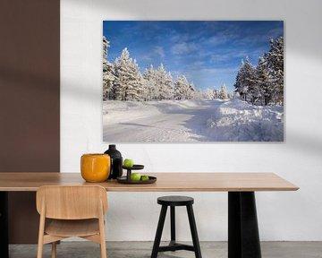Sneeuw in Fins Lapland