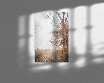Ambiance de conte de fées dans la forêt sur Petra Brouwer
