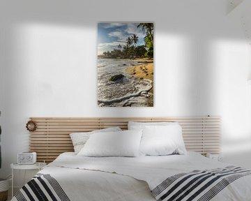 Tropisch strand Sri Lanka