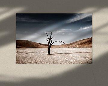 Dode Camelthorn bomen tegen rode duinen en blauwe hemel in Deadvlei, Sossusvlei van Tjeerd Kruse